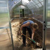 Bepflanzung-Gewchshaus1_Sichardt