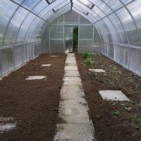 Bepflanzung-Gewchshaus2_Sichardt